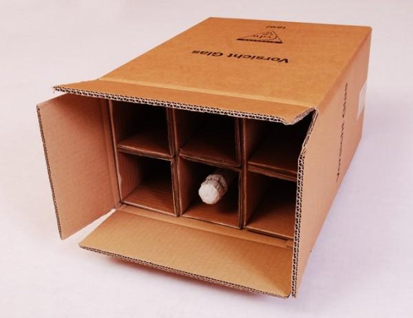 6 er Flaschenkarton - PTZ-Zulassung Post/DHL und UPS