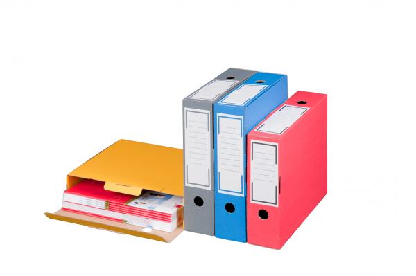 Archiv-Ablagebox 100 blau, geschlossen, 315 x 96 x 260 mm